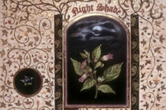 2004 Nightshade 24x18