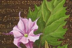 2005 Datura Charm (detail)